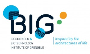 logo-big-quadri